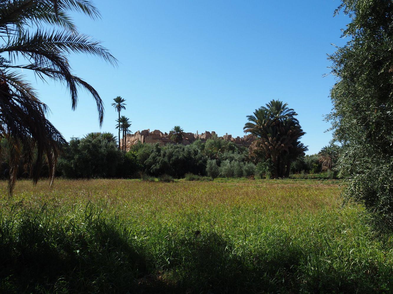 article_1711_Soleil d'automne sur les montagnes du Maroc_22