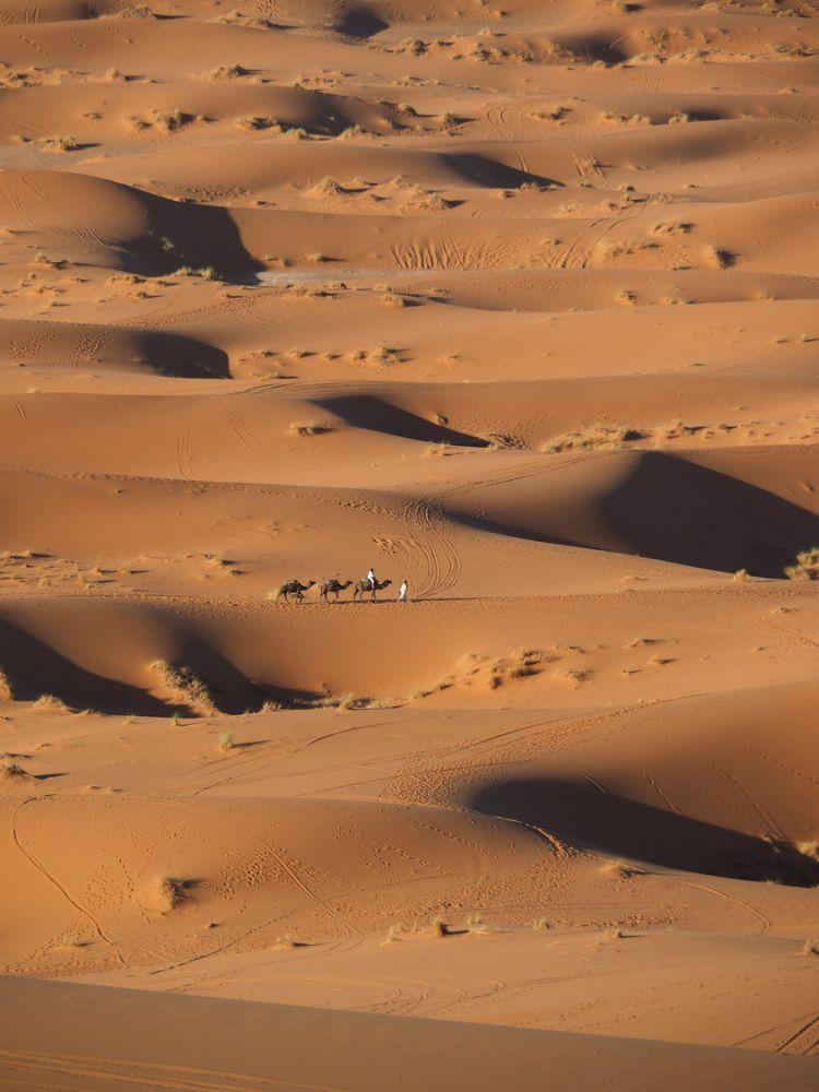 article_1711_Soleil d'automne sur les montagnes du Maroc_25
