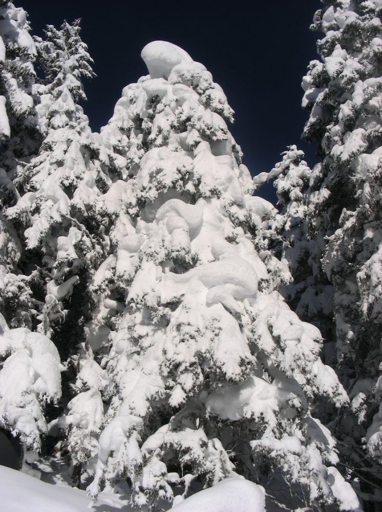article Quand les pyrenees se transforment en alaska 3-15_06