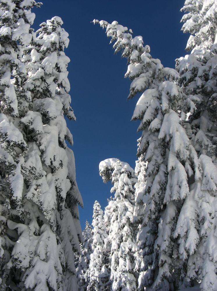 article Quand les pyrenees se transforment en alaska 3-15_07