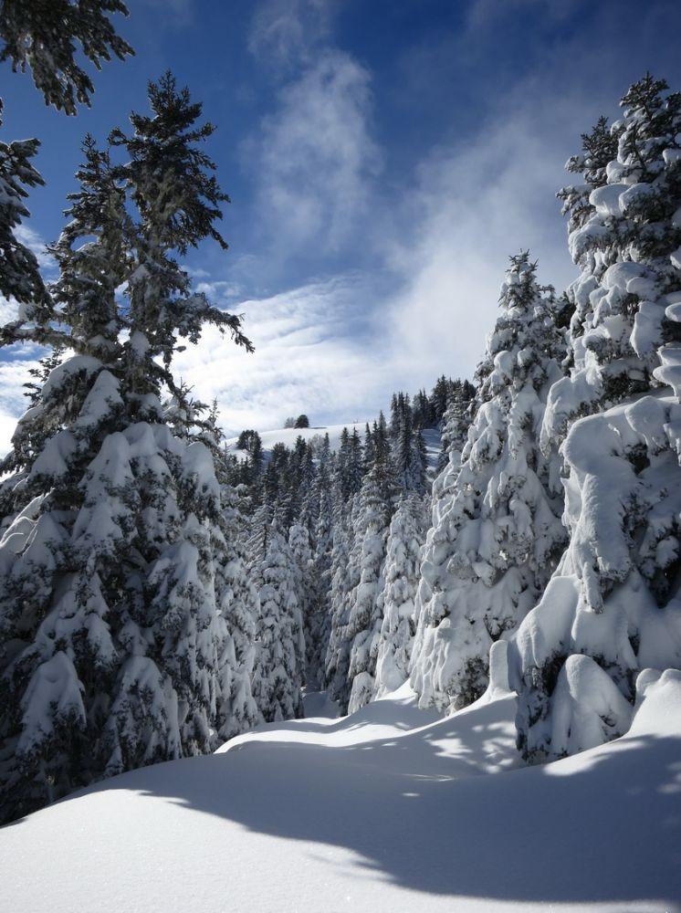 article Quand les pyrenees se transforment en alaska 3-15_13