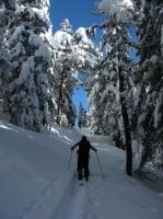 article Quand les pyrenees se transforment en alaska 3-15_08