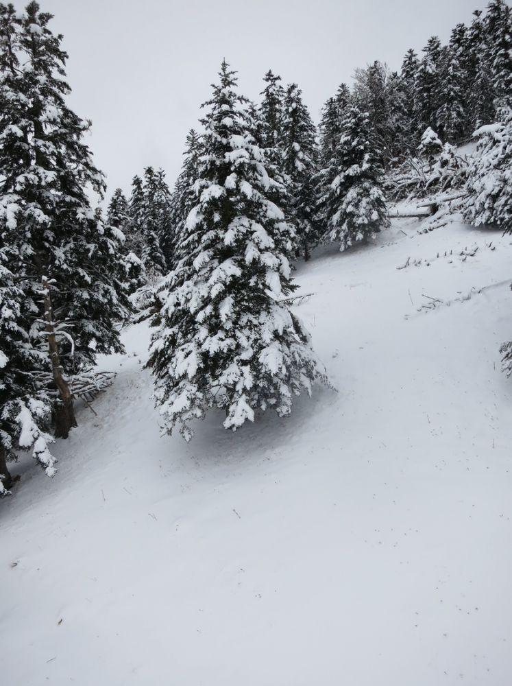 aricle_1701_Enfin la neige!_04