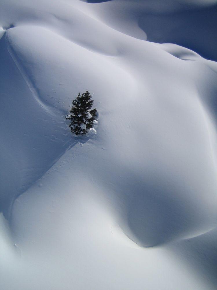 Paysages_hiver_afdv_47