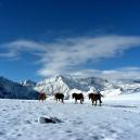 Paysages_hiver_afdv_34