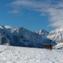 Paysages_hiver_afdv_36