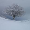 Paysages_hiver_afdv_42