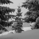 Paysages_hiver_afdv_68