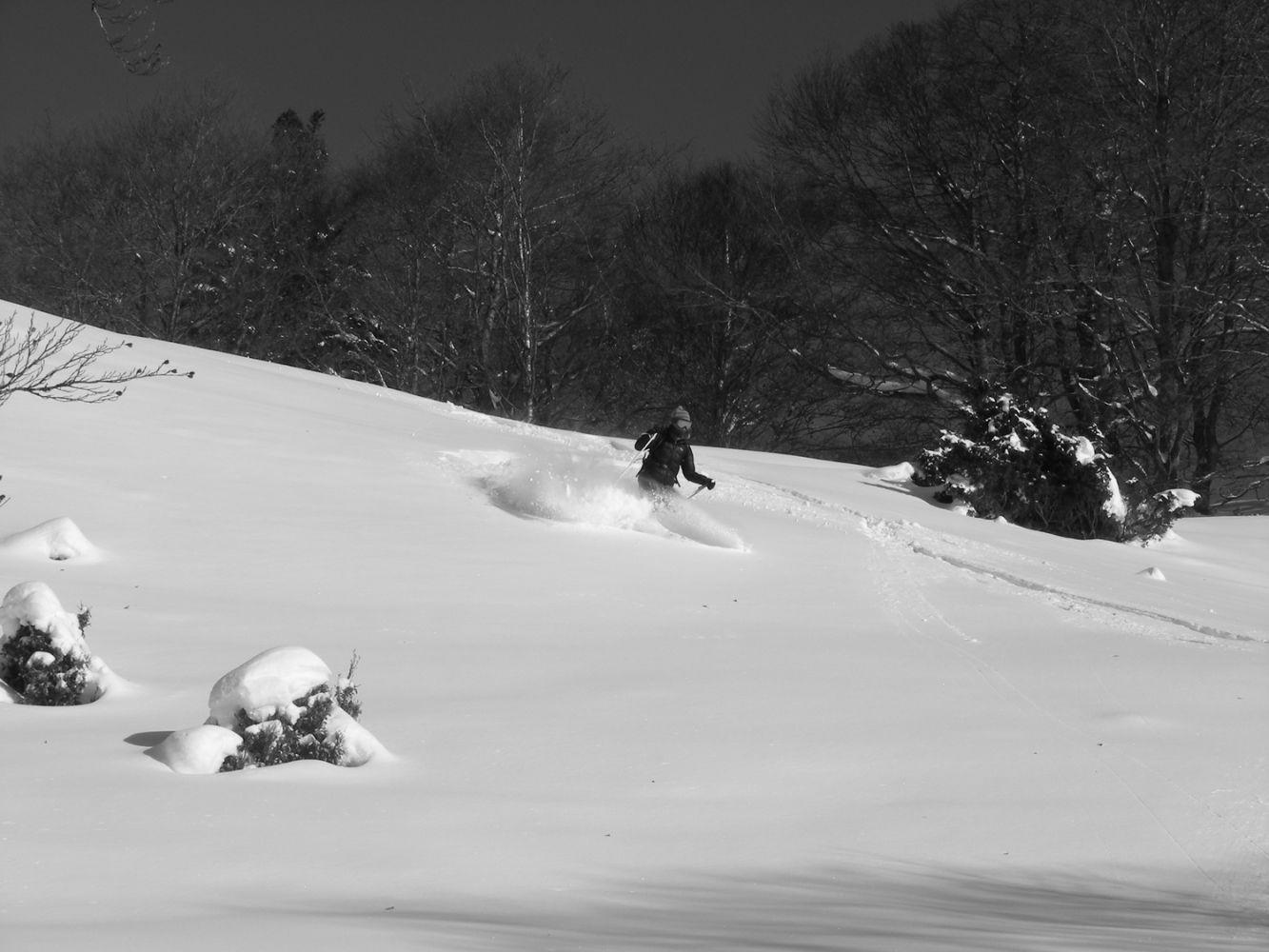 Ski_AFDV_168