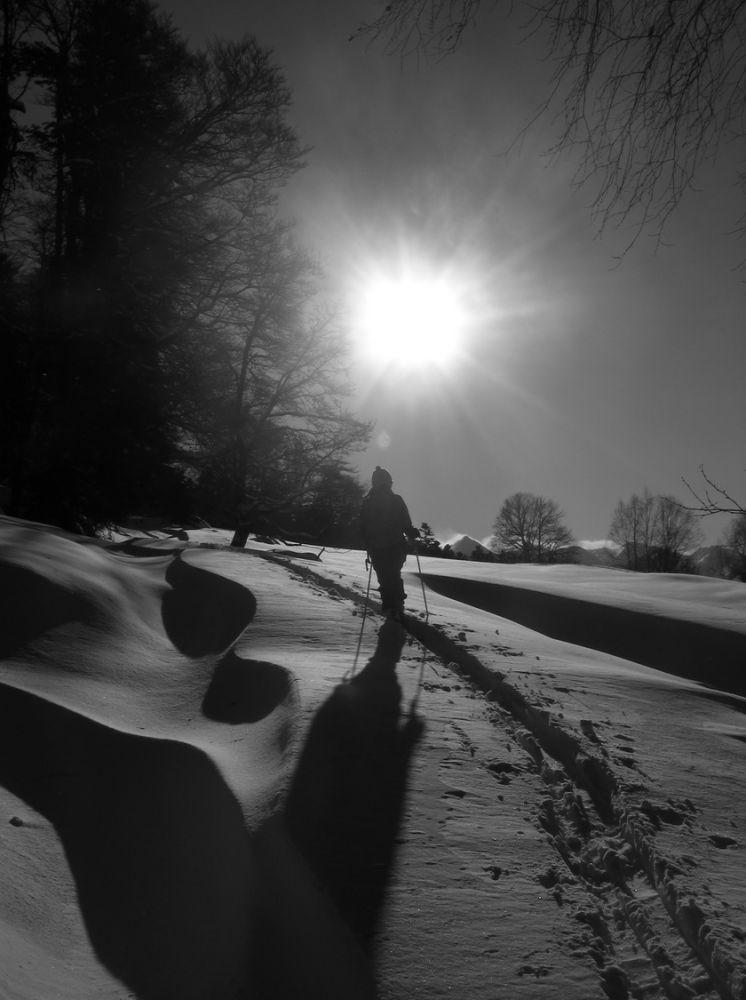 Ski_AFDV_169