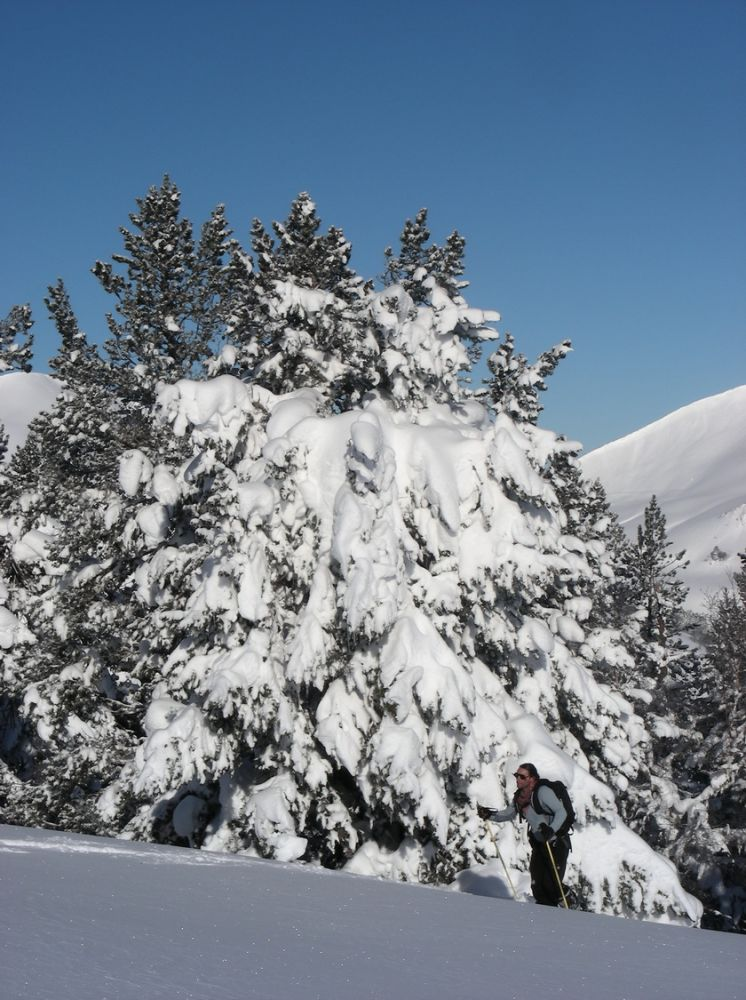 Ski_AFDV_33