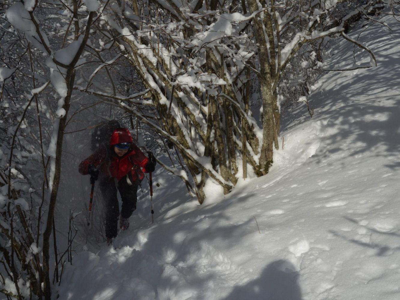 Ski_AFDV_97