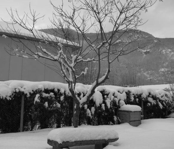 Location luchon_04