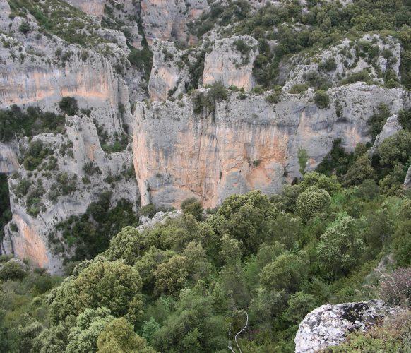 Sejour_Ran_Pyrénées-insolites_21