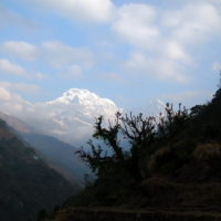 Trek - Nepal 13j-12n_rek Mardi Himal_07