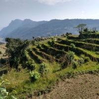 Trek - Nepal 13j-12n_rek Mardi Himal_11